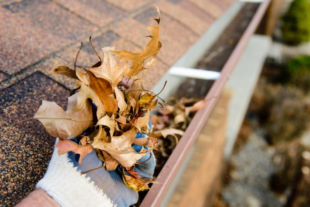 cleaning gutters can improve curb appeal
