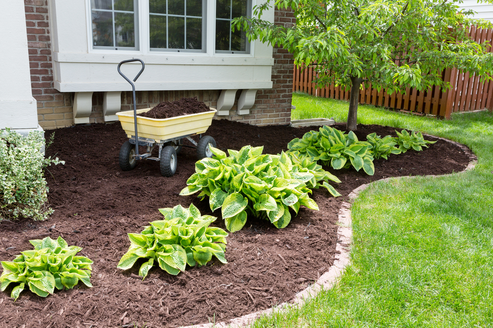 Landscape Gardening Per Hour : Quick curb appeal projects you can do in an hour u pack