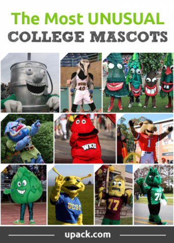 10 unique and unusual college mascots